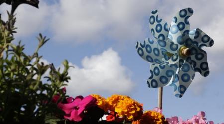 Esperando o vento a favor. Autora: María López Corral. La terraza, el lugar en el que recuperar el viento a favor y esperar la llegada de la primavera