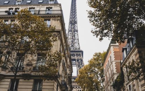 +60 online: Aprende a comunicarte en francés básico II