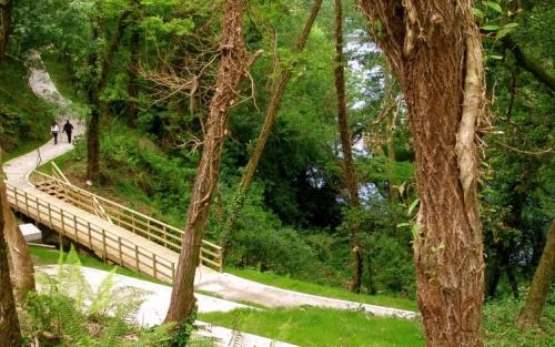Senderismo saludable, Espazo +60 Pontevedra