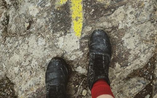 Camiño Francés (103 km)