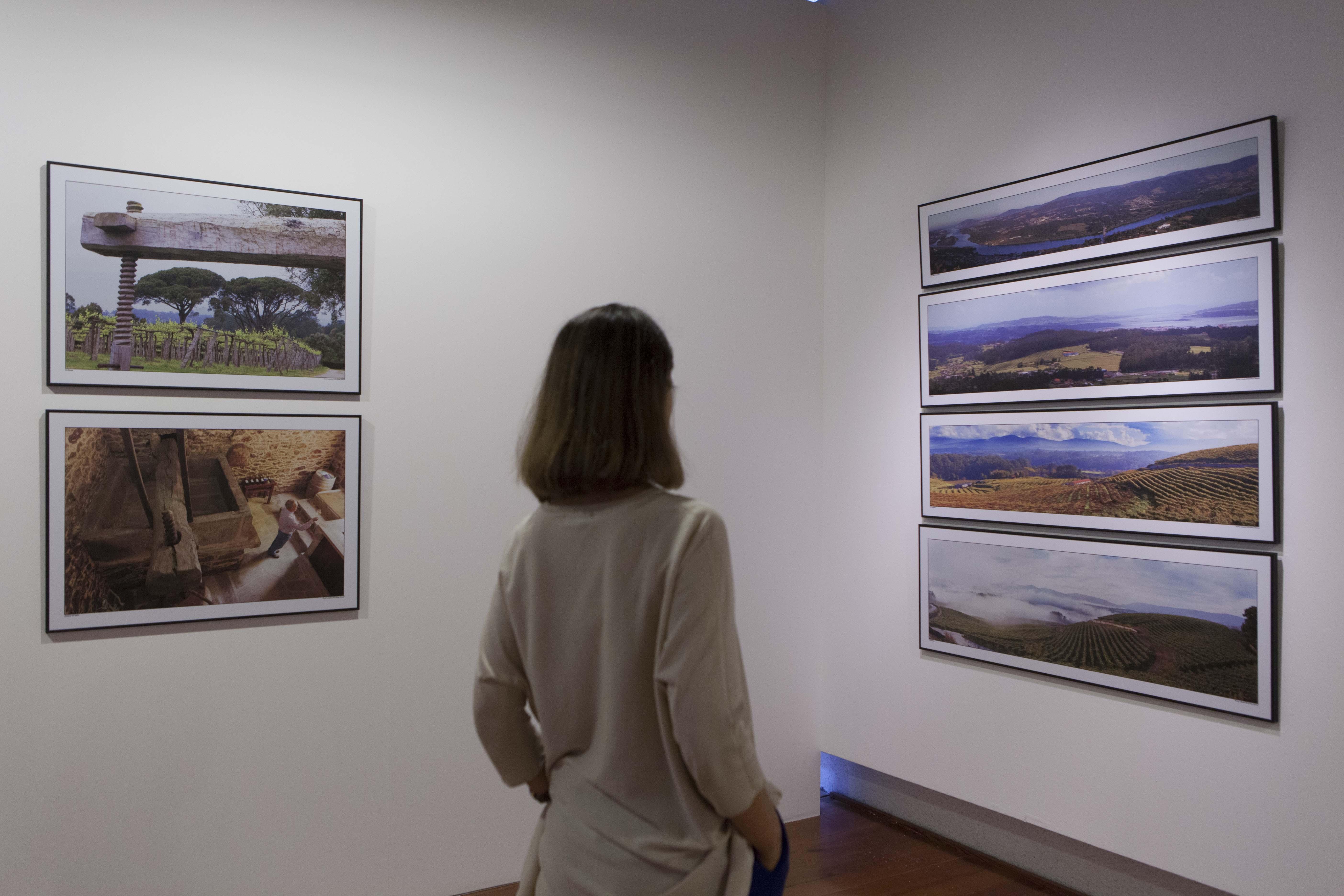 El Consejo de la D. O. Rías Baixas inaugura mañana en la Fundación Novacaixagalicia la muestra «Rías Baixas, o viño do mar»